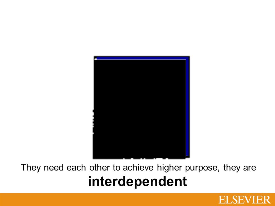 They need each other to achieve higher purpose, they are interdependent Why is it so important?