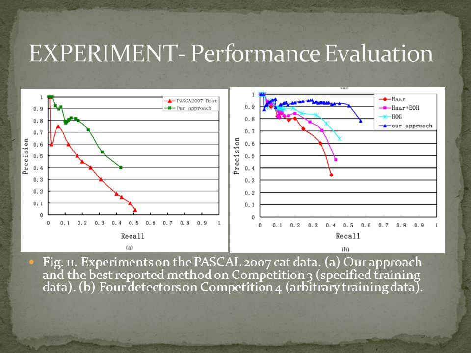 Fig. 11. Experiments on the PASCAL 2007 cat data.