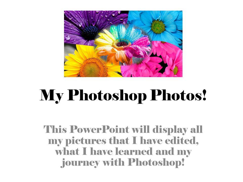 My Photoshop Photos.
