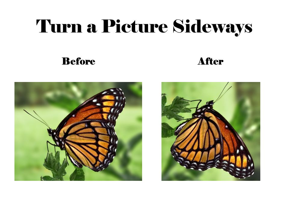 Turn a Picture Sideways BeforeAfter