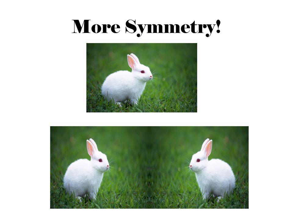 More Symmetry!