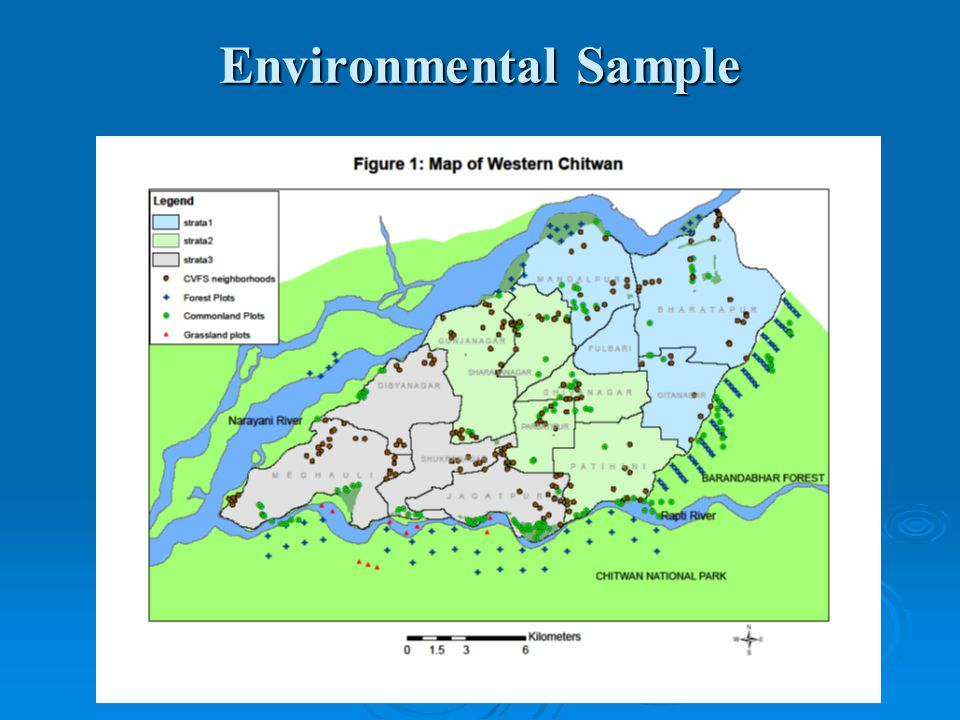 Environmental Sample