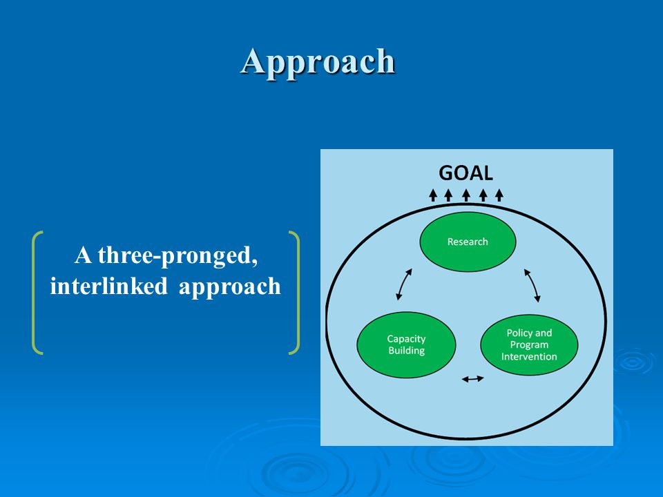 Approach A three-pronged, interlinked approach