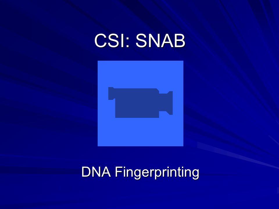 CSI: SNAB DNA Fingerprinting