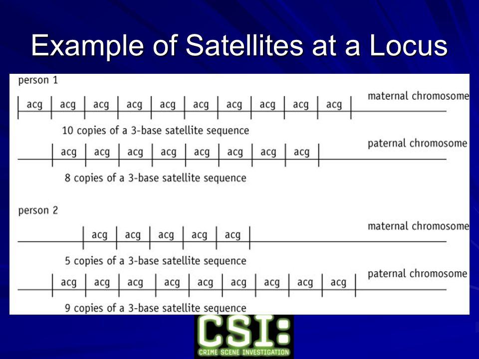 Example of Satellites at a Locus