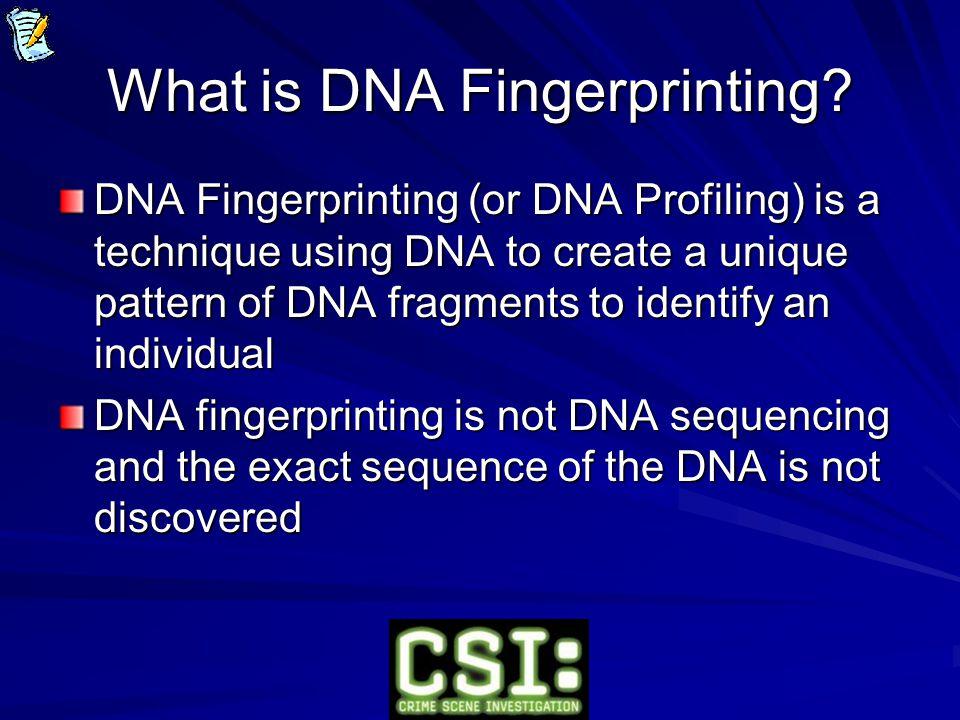 What is DNA Fingerprinting.