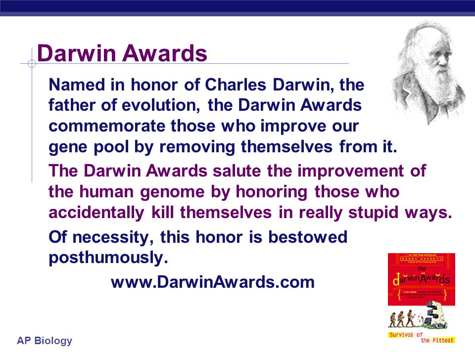 AP Biology Darwin Awards Named in honor of Charles Darwin, the father of evolution, the Darwin Awards commemorate those who improve our gene pool by removing themselves from it.