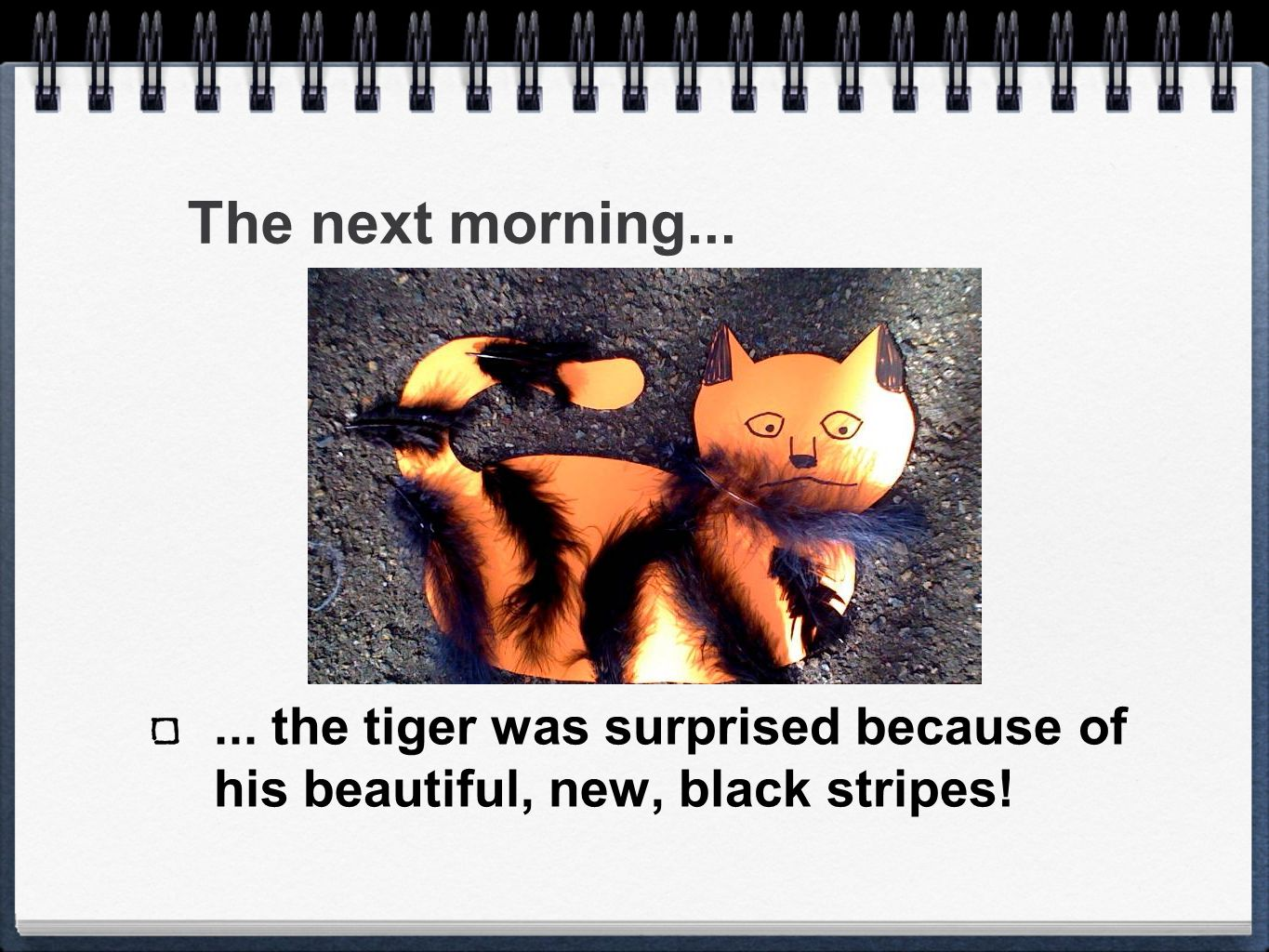 The next morning...... the tiger was surprised because of his beautiful, new, black stripes!