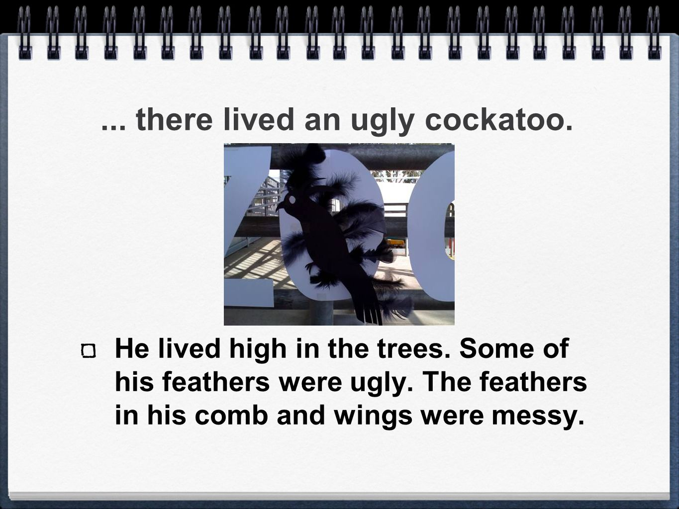 ...there lived an ugly cockatoo. He lived high in the trees.