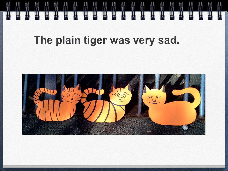 The plain tiger was very sad.