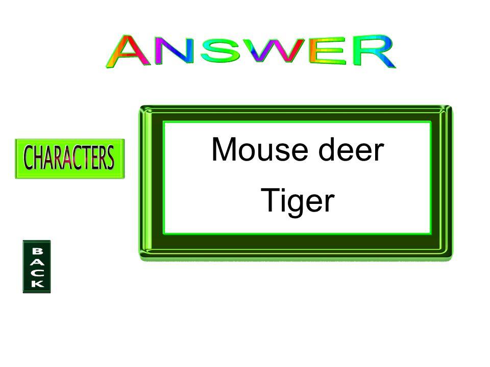 Mouse deer Tiger