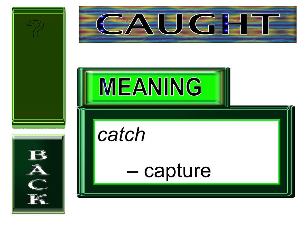 catch – capture