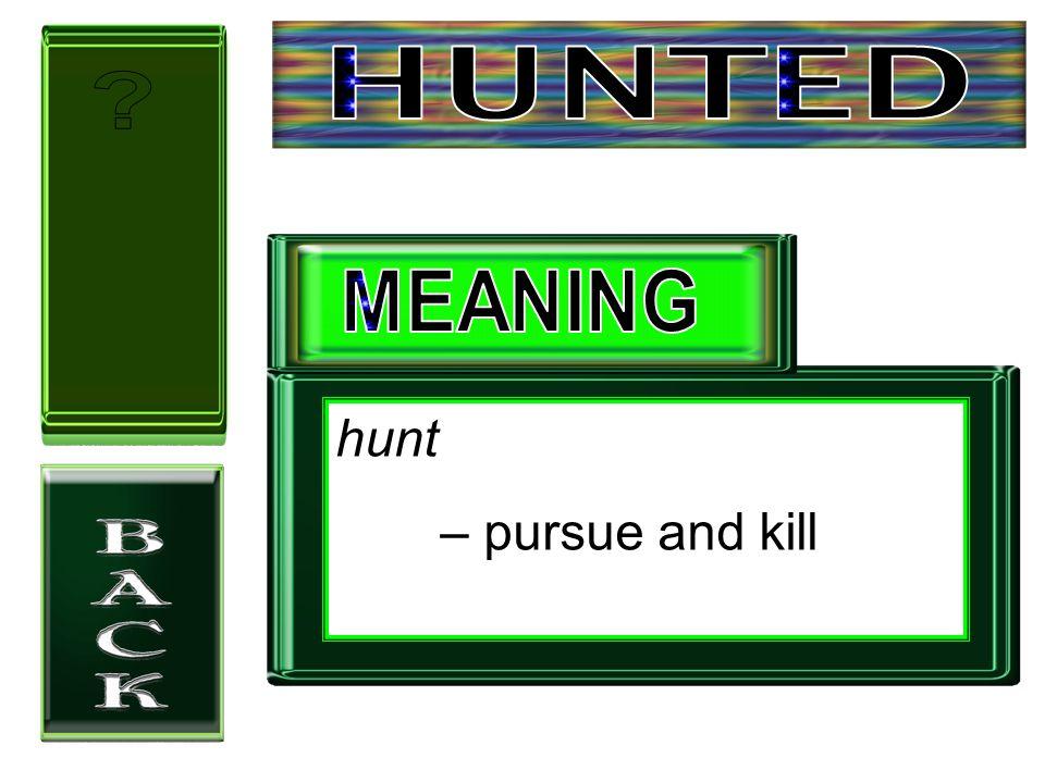 hunt – pursue and kill