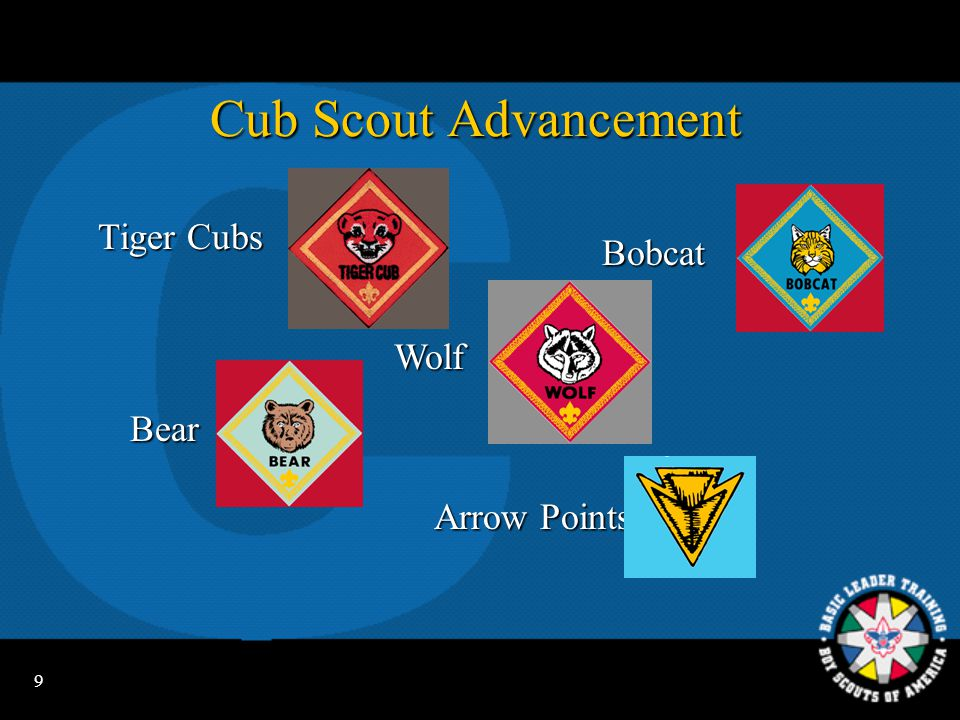 8 Tiger Cub Advancement Tiger Cub totem Tiger Cub totem Tiger Cub rank Tiger Cub rank Tiger Tracks Tiger Tracks Parents are adult partners for all meetings and activities.