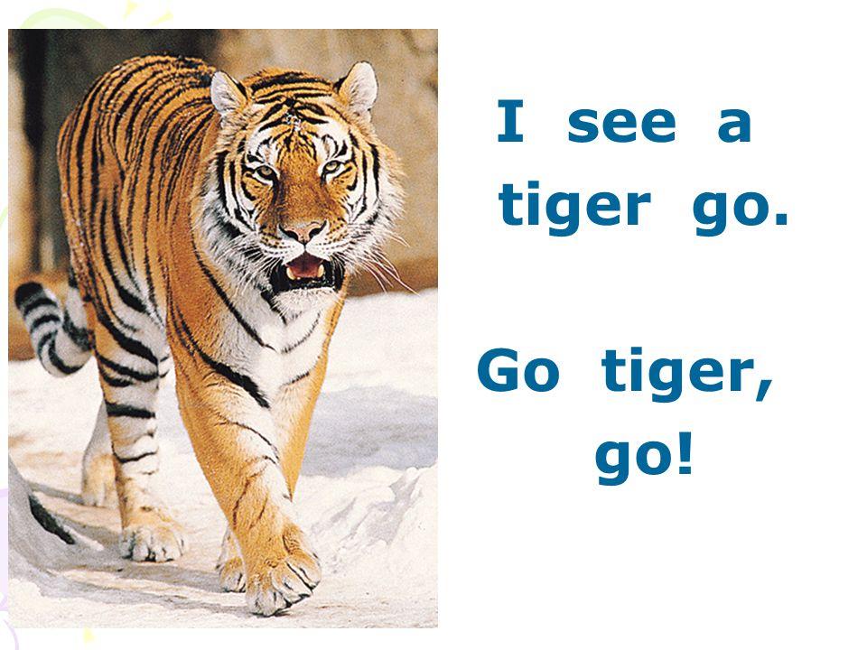 I see a tiger go. Go tiger, go!