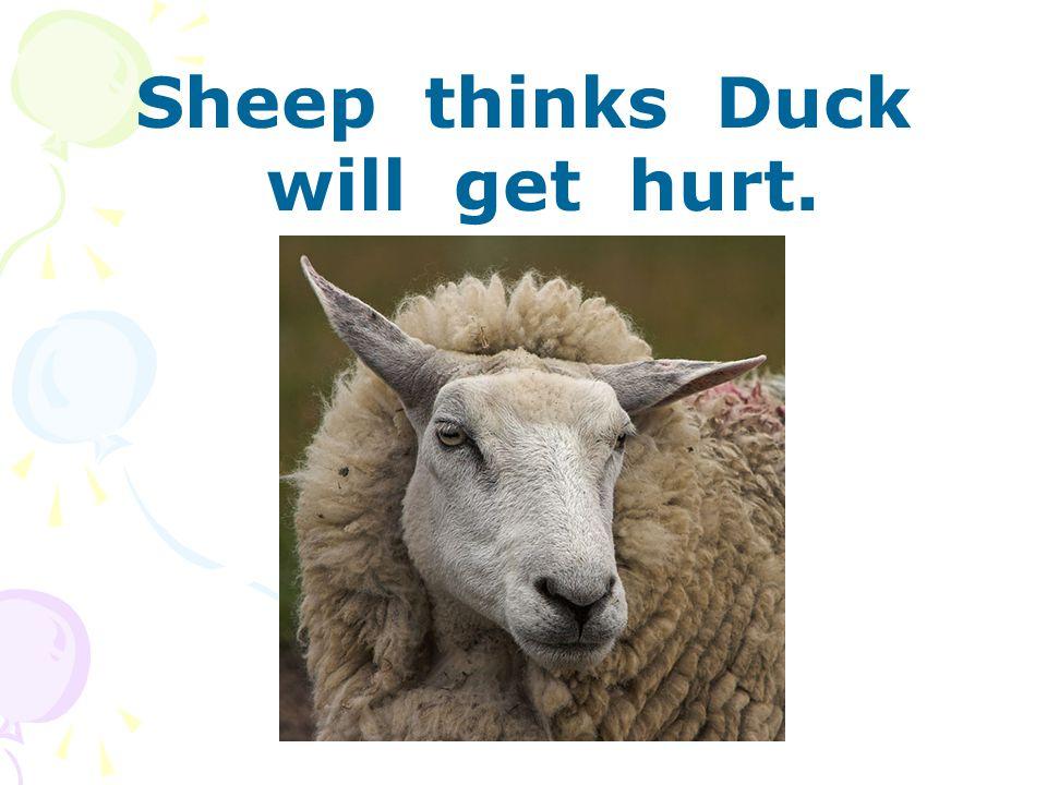 Sheep thinks Duck will get hurt.