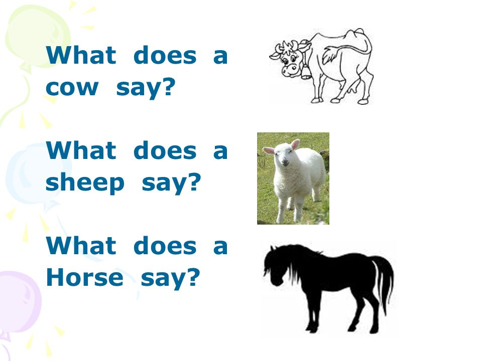 What does a cow say? What does a sheep say? What does a Horse say?