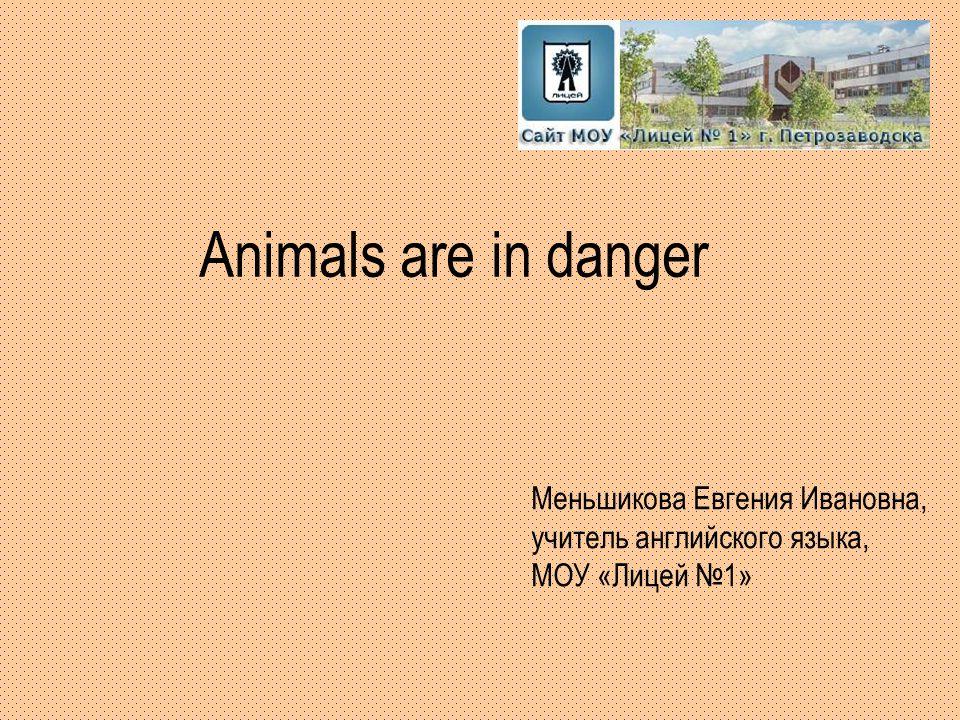 Animals are in danger Меньшикова Евгения Ивановна, учитель английского языка, МОУ «Лицей №1»