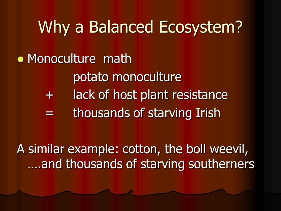 Why a Balanced Ecosystem.