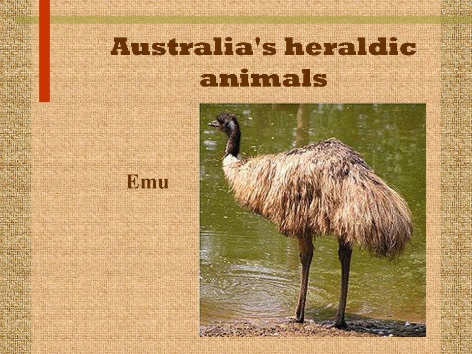 Australia's heraldic animals Emu