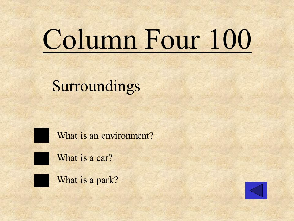 Column Three 300 A producer. What is organisms that make new food through use of light energy.