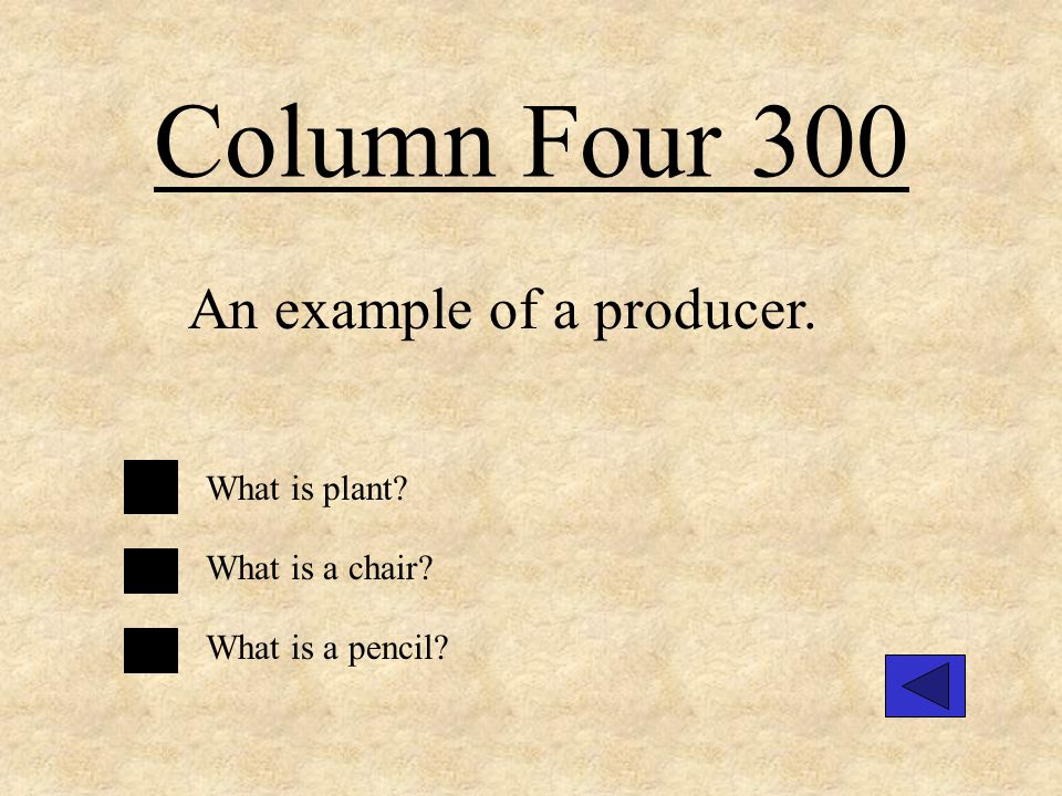 Column Four 200 An example of a consumer. What is a fox What is chair What is a rock