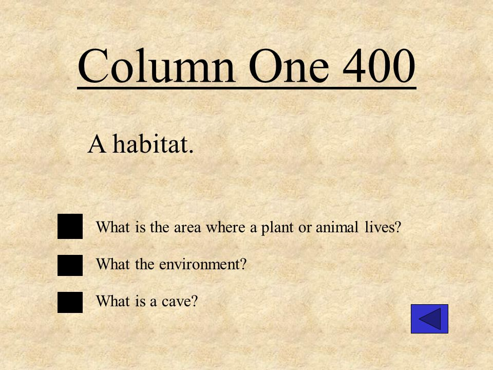 Column One 400 A habitat.What is the area where a plant or animal lives.
