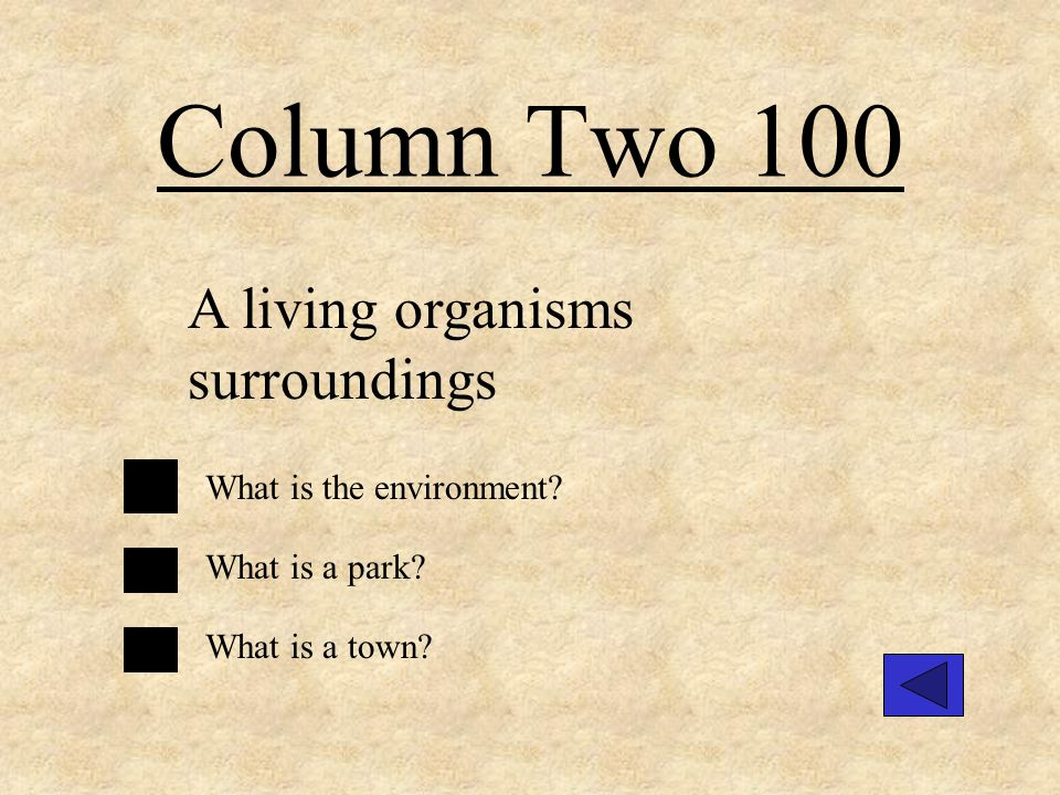 Column Four 300 An example of a producer. What is plant? What is a chair? What is a pencil?