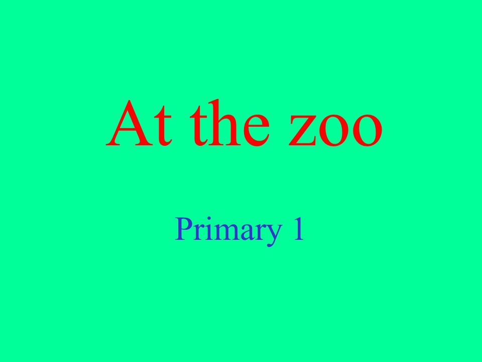 At the zoo Primary 1