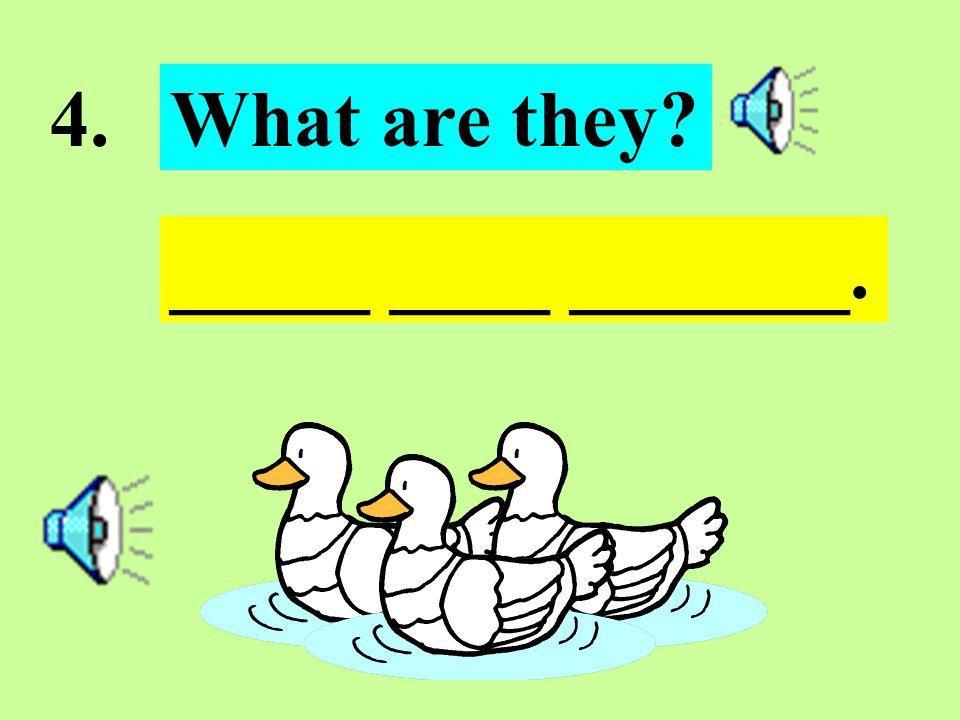 3. It is ___ ______. What is it