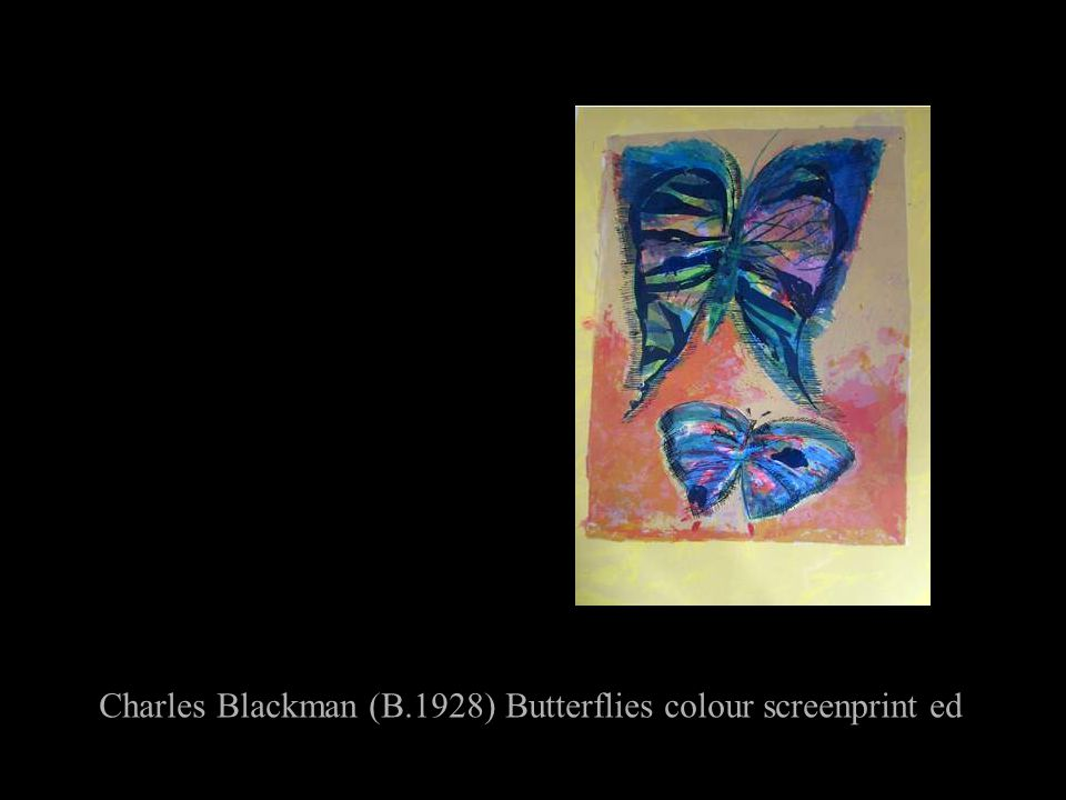 Charles Blackman (B.1928) Butterflies colour screenprint ed