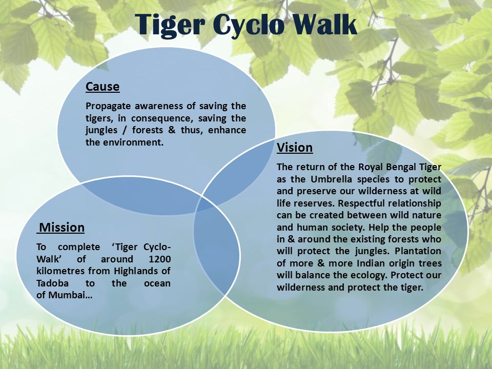 Tiger Cyclo Walk Cause Propagate awareness of saving the tigers, in consequence, saving the jungles / forests & thus, enhance the environment. Vision