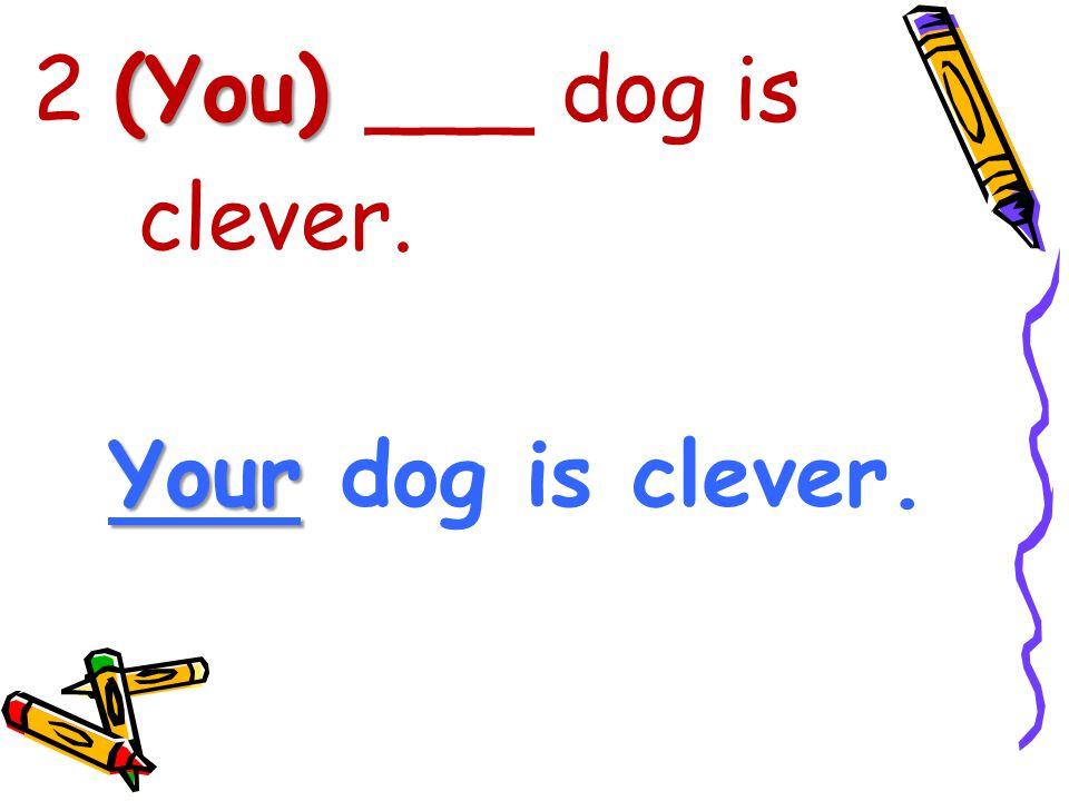 (You) 2 (You) ___ dog is clever. Your Your dog is clever.