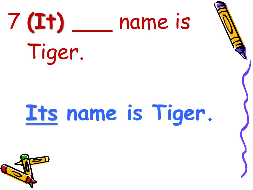 (It) 7 (It) ___ name is Tiger. Its Its name is Tiger.
