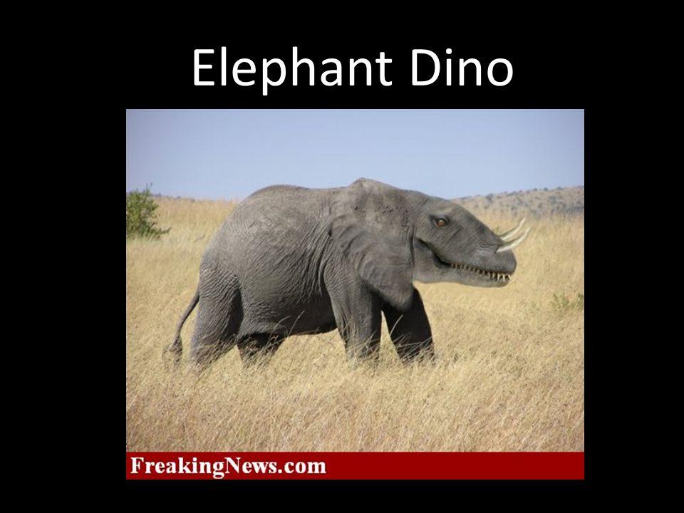 Elephant Dino
