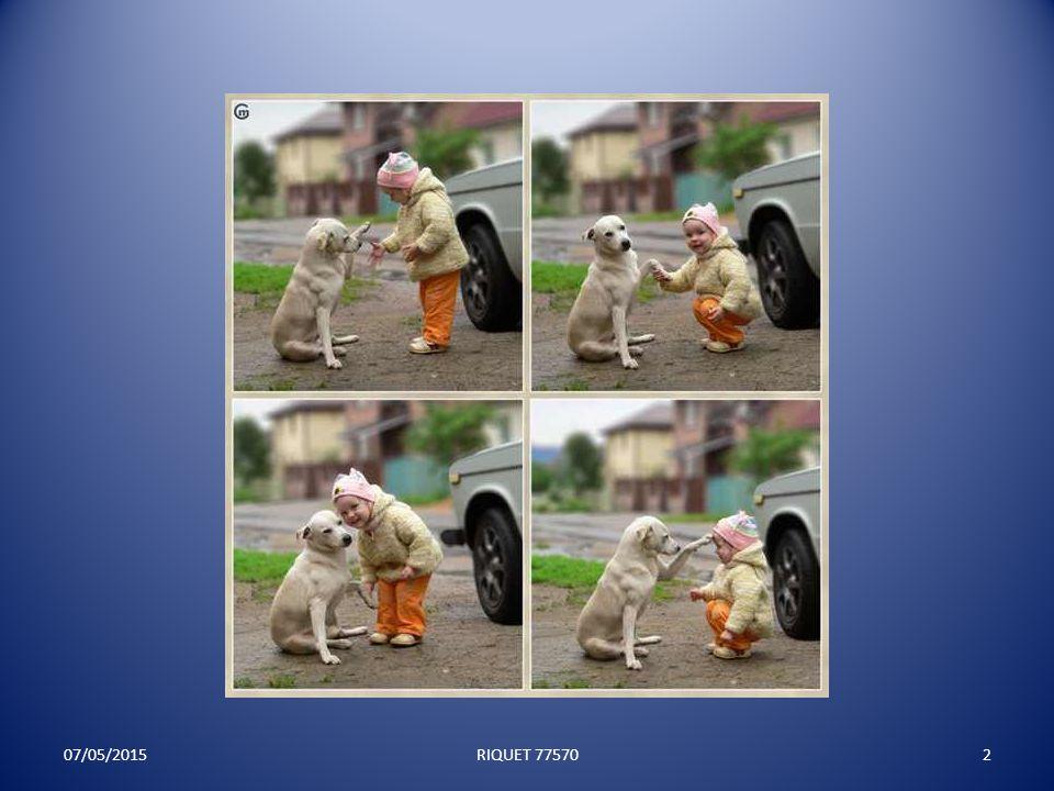 Les photos qui vous feront sourire 07/05/20151RIQUET 77570