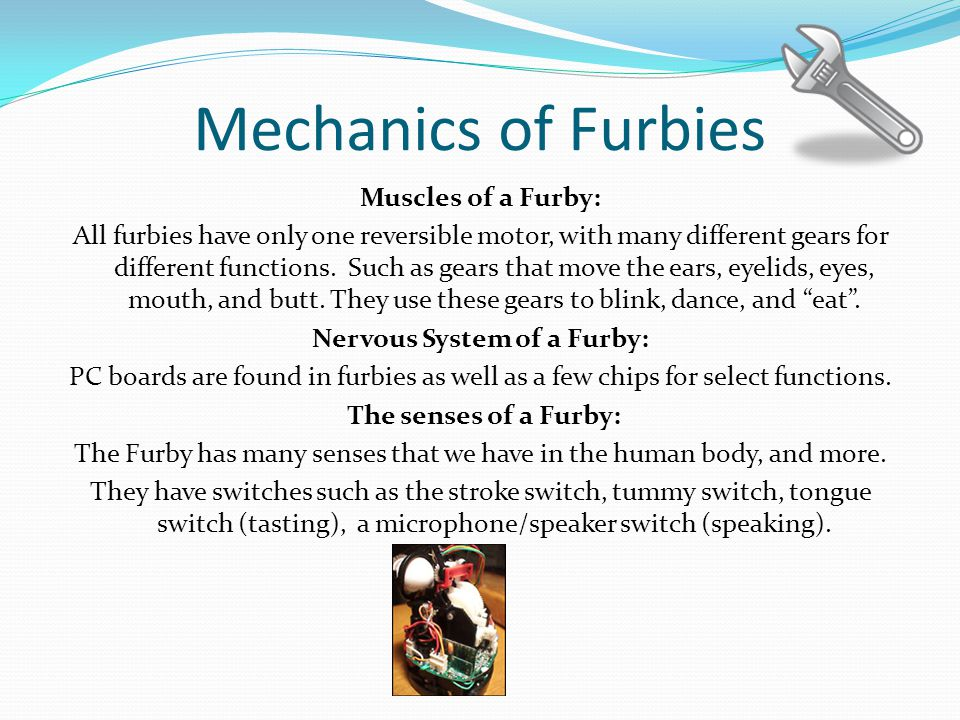 Mechanics of Furbies Muscles of a Furby: All furbies have only one reversible motor, with many different gears for different functions.