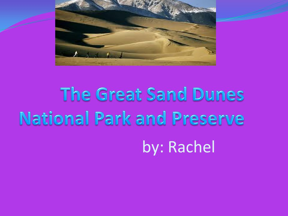 Where the park is located The Great Sand Dunes National Park is located in parts of Alamosa County and Saguache County in Colorado, in the United States