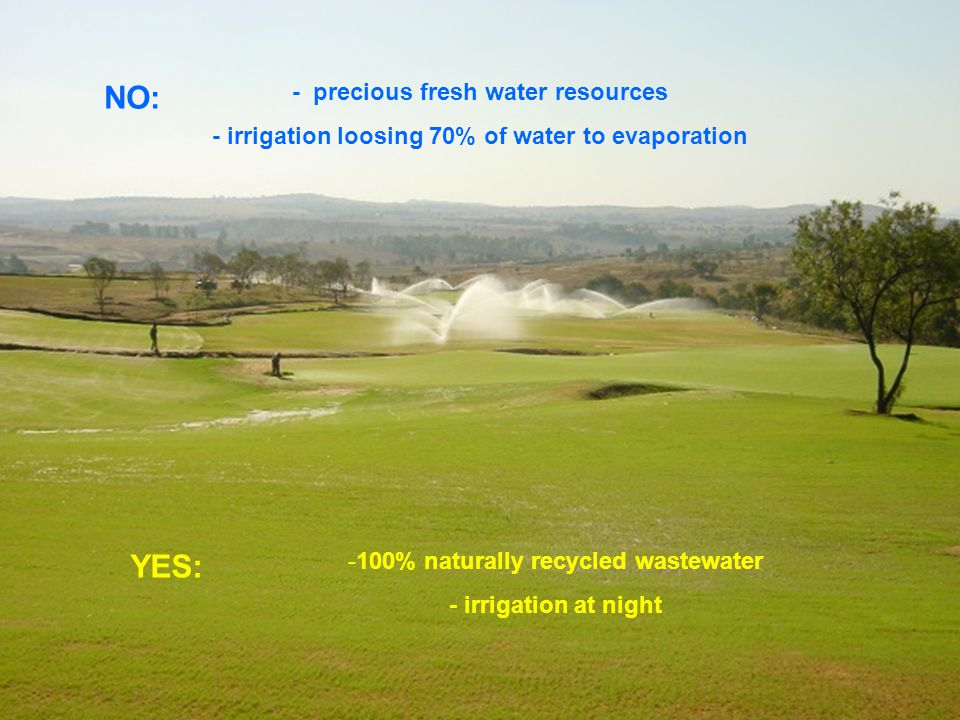 To produce Carbon Fuel with a Community Biomass Reactor for heating & cooking using grass, invader bush, saw mill waste, sewage sludge and other organic waste Benefits to the Community: Job creation with low investment cost of R10,000/job (SA national average is about R50,000 ) Community receives dividends Increased economic activity as money multiplies within the community