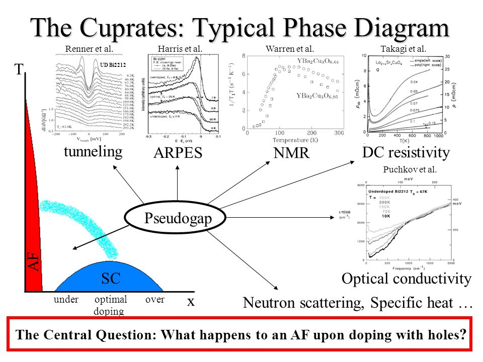 The Cuprates: Typical Phase Diagram x T SC AF underoptimalover doping The Central Question: What happens to an AF upon doping with holes .
