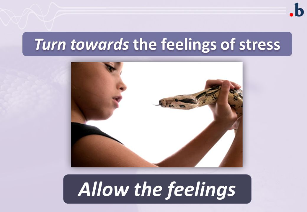 Turn towards the feelings of stress Allow the feelings
