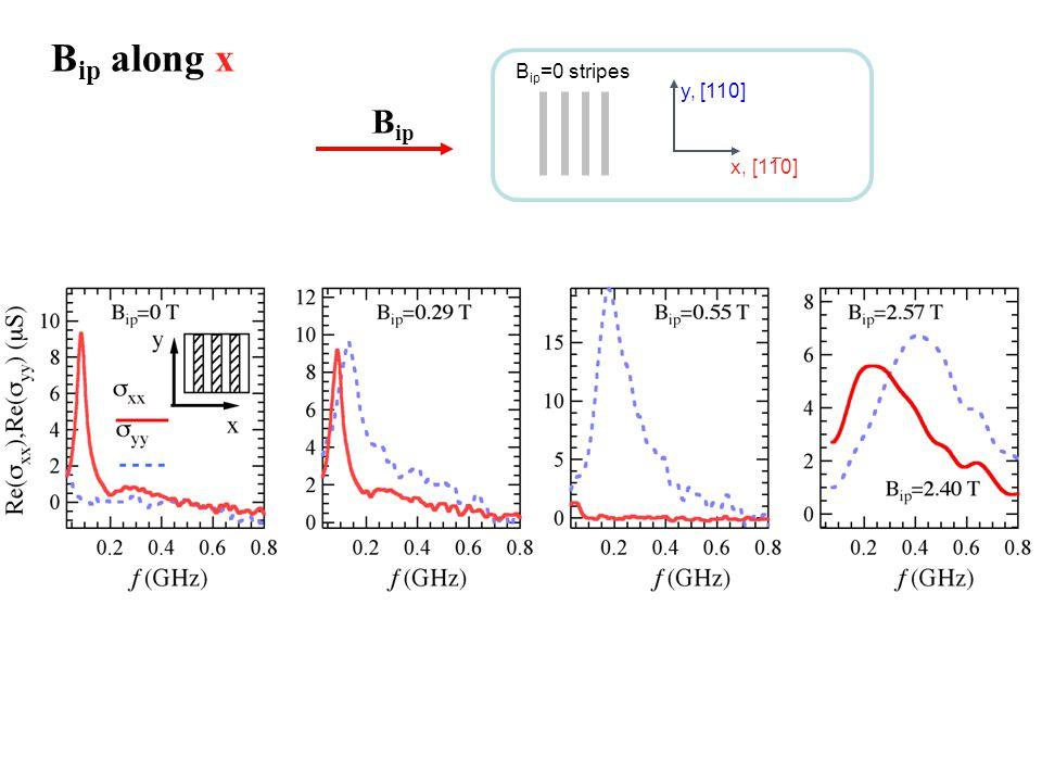 B ip B ip along x B ip =0 stripes x, [11 ̅ 0] y, [110]