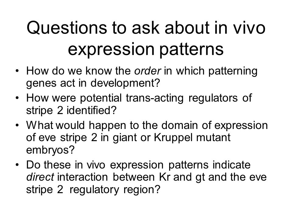 Questions to ask about in vivo expression patterns How do we know the order in which patterning genes act in development.
