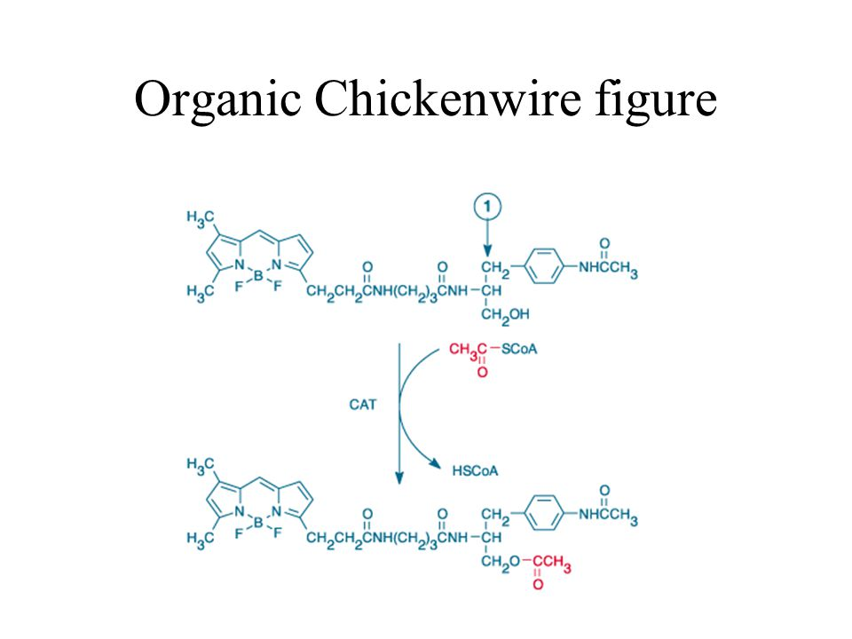 Organic Chickenwire figure