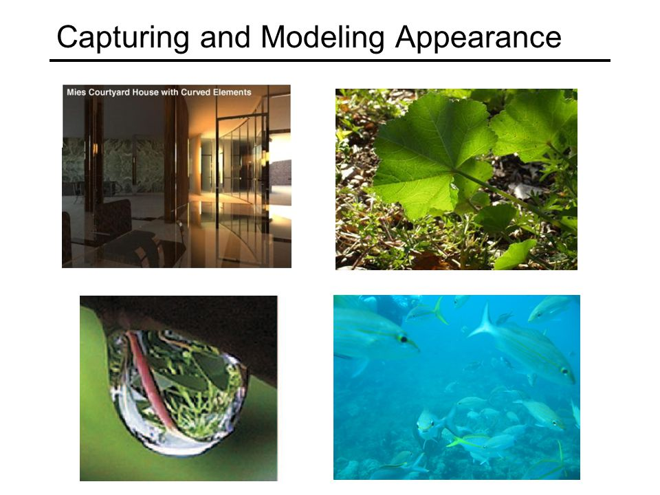 Capturing and Modeling Appearance
