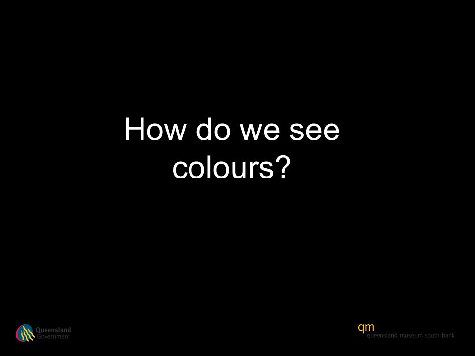 How do we see colours?