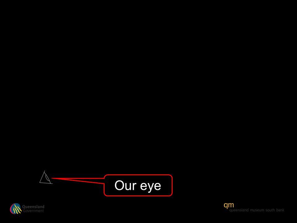 Our eye