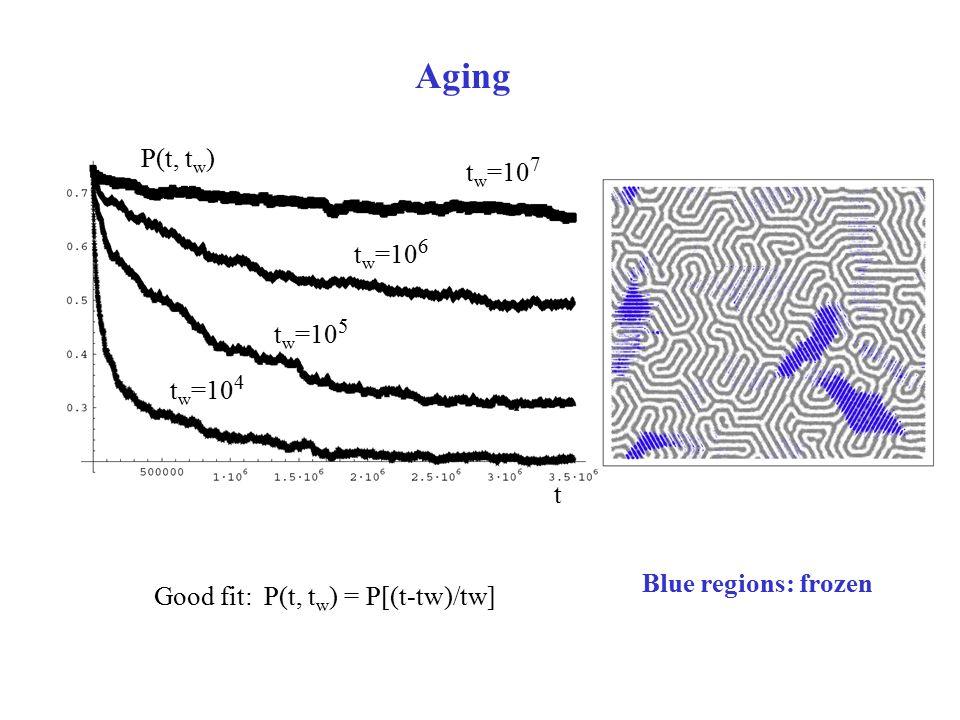 Aging P(t, t w ) t w =10 4 t w =10 5 t w =10 6 t w =10 7 Good fit: P(t, t w ) = P[(t-tw)/tw] t Blue regions: frozen