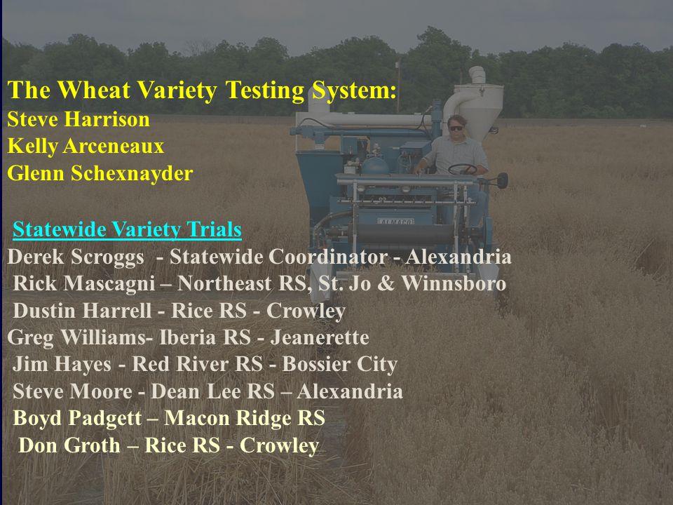 The Wheat Variety Testing System: Steve Harrison Kelly Arceneaux Glenn Schexnayder Statewide Variety Trials Derek Scroggs - Statewide Coordinator - Alexandria Rick Mascagni – Northeast RS, St.