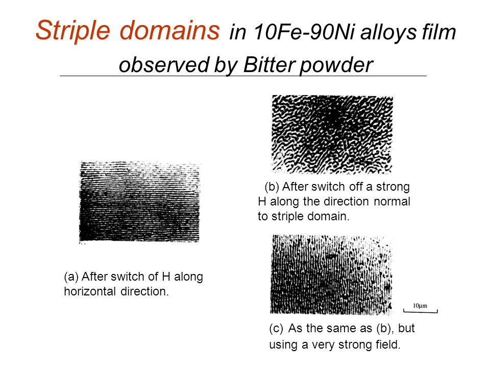 Striple domains in 10Fe-90Ni alloys film observed by Bitter powder (a) After switch of H along horizontal direction. (b) After switch off a strong H a